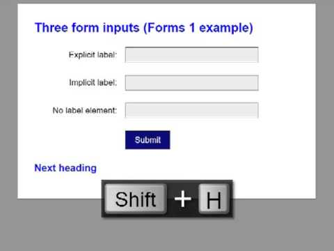 Identification three basic form inputs by NVDA