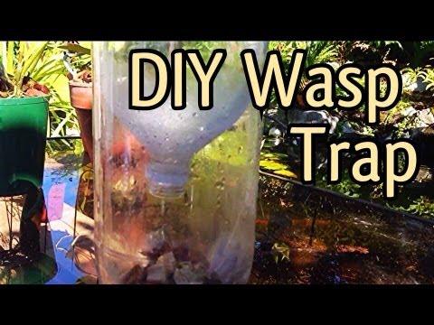 FREE Homemade Pop Bottle Wasp Trap/ FREE DIY Soda Bottle Yellow Jacket Trap