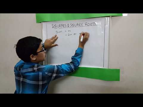 Pythagorean Triplets in Square & Square Roots