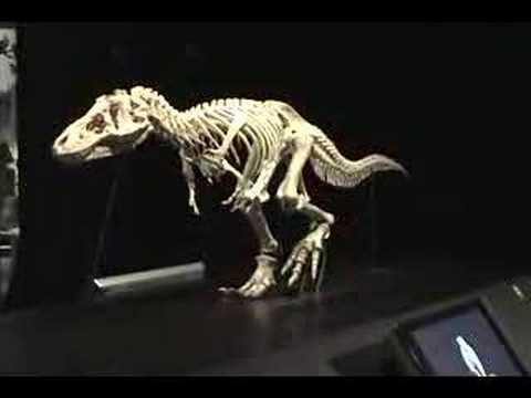 Moving T-Rex Model