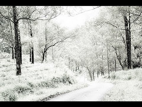 Photoshop Tutorial: How to Change a Photo of SUMMER into WINTER.