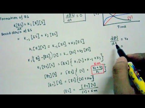 Michaelis Menten equation derivation
