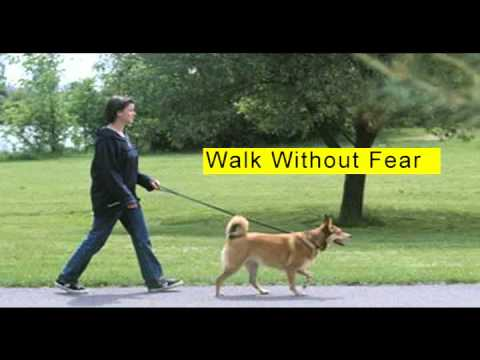 dog attack protection prevention devices