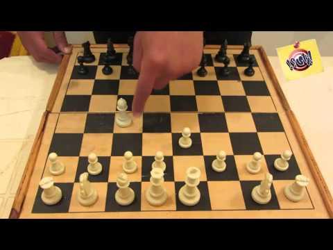 تعلم كيف تلعب الشطرنج للمبتدئين من الصفر حتى الاحتراف