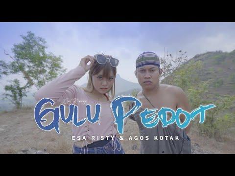 Download Lagu Esa Risty Gulu Pedot feat. Agos Kotak Mp3