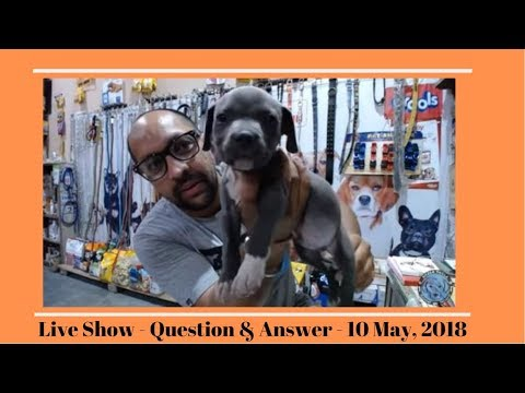 Live Show - Question & Answer - 10 May, 2018