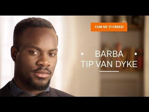 DIY : Barba stilul Van Dyke