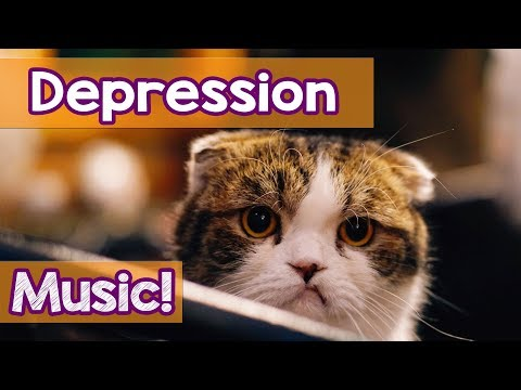 How To Make My Cat Stop Crying? 15 Hours Music for Cats To Help Your Depressed Kitten! Soothing!
