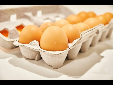 Egg vs Egg: Do Pasture-Raised Eggs Taste Better Than Cage-Free Eggs?