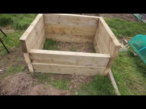 Growing for show : How to grow exhibition carrots, and build the box on the allotment