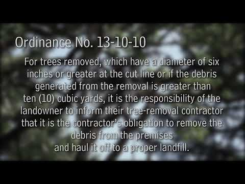 Know Your Parish: Tree Cutting Rules