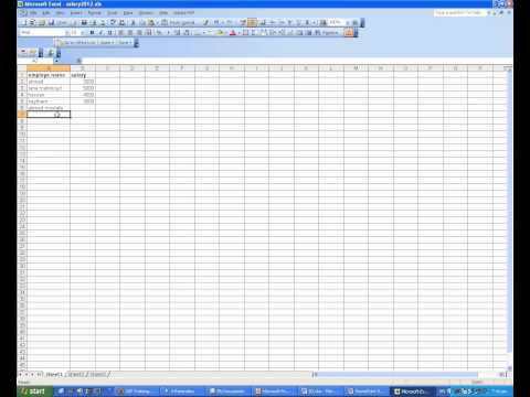 Microsoft Excel 2003 course: Excel Basics (03- Enter, edit and delete data)