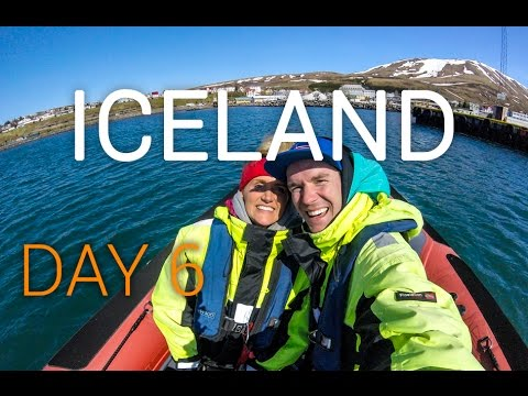 Iceland Vlog Day 6: Husavik Whale Watching | Whale Museum | Aimee's Birthday | Kinging-It