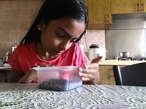 How to make oreo ice-cream cake part 1/3
