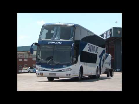 About Greyhound South-Africa