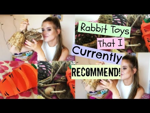 Rabbit Toys That I CURRENTLY RECOMMEND! | RosieBunneh
