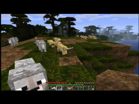 [Minecraft] Bug Spawn Ocelote and wolf no cheat