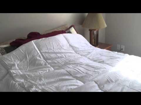 Goose Down Alternative Comforter #GoosDowAlternativComforter