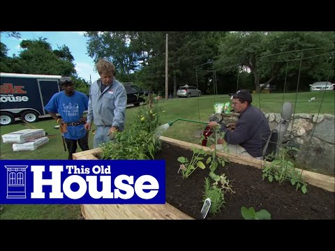 How to Plant a Raised Garden Bed - This Old House