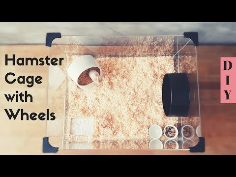 Diy See-Thru Hamster Cage and Built-in Wheels
