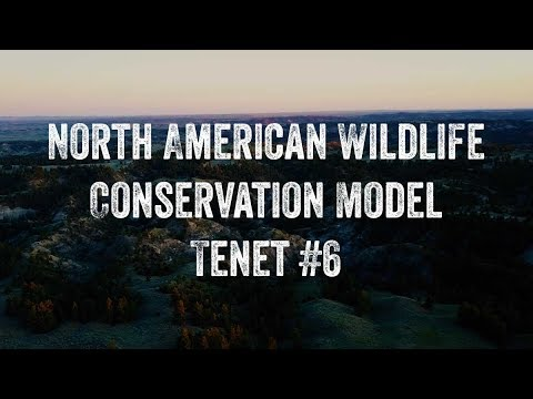North American Wildlife Conservation Model - Tenet #6