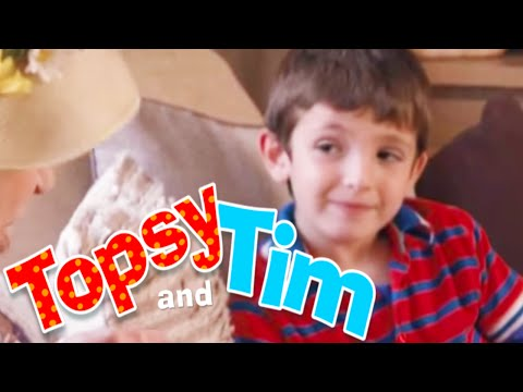Topsy and Tim - The Lost Cat