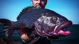Он поймал самую РЕДКУЮ рыбу на планете, Вы Должны Это Видеть!