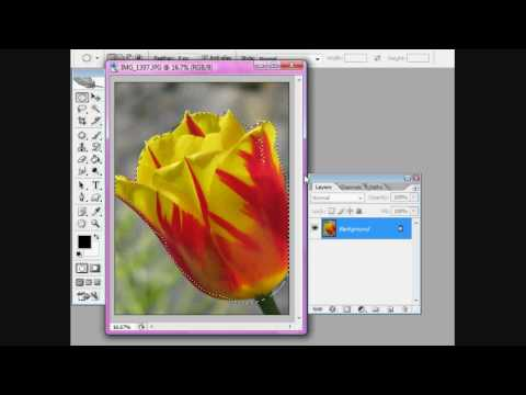 Photoshop CS2: How to make text follow a path
