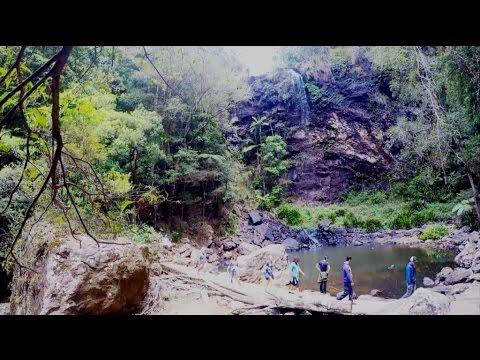 Bushwalking Excursion (Twin Falls, Springbrook, Queensland)