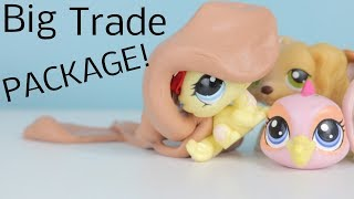 LPS~Big Trade Package! (From LPSAquaCloud)
