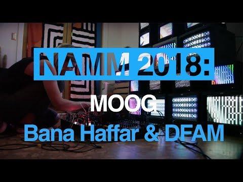Bana Haffar performs live with Moog DFAM and explains her modular set-up