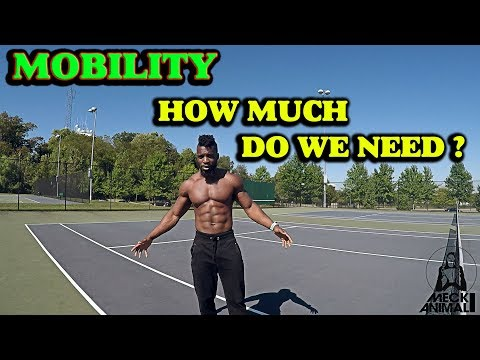MOBILITY |  HOW MUCH DO YOU NEED ?