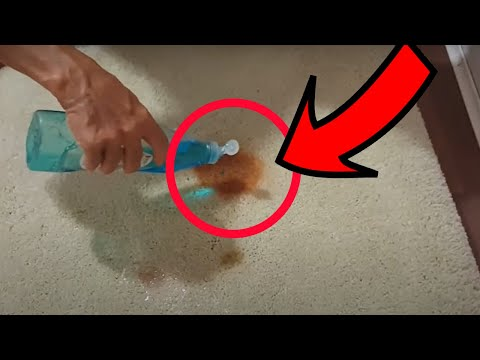 How to Remove Ketchup & Soy Sauce Stains From Carpet in 5 Minutes
