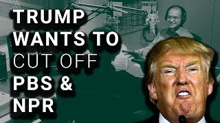 Trump Wants to Cut ALL Funding for PBS & NPR