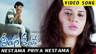 Teeyani Kalavo Movie Song - Nestama Priya Nestama Full Video Song - Sri Tej,Akhil Karteek,Hudasa