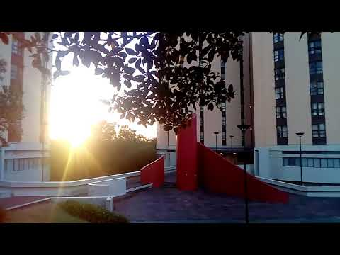 Morning Sunrise In Cape Town | UCT | Lower Campus | Leo Marquard Hall