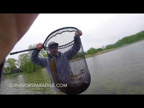 How to Catch MONSTER Carp W/ rod and reel
