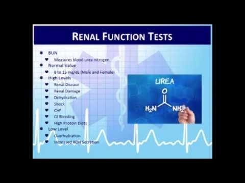 Critical Care Paramedic 4:  Interpretation of Lab and Basic Diagnostic Tests