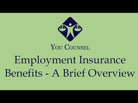Employment Insurance Benefits - A Brief Overview