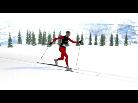 Cross Country Skiing - VIDEOGRAPHIC