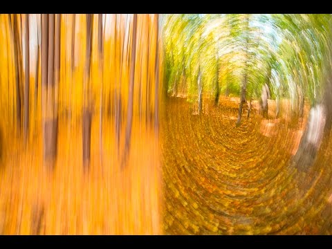 CREATIVE PHOTOGRAPHY TIPS - Camera Motion Blur Effects