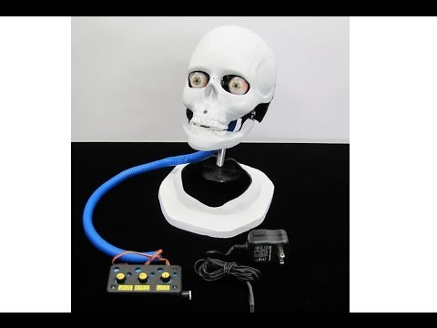 Animatronic Medical Head