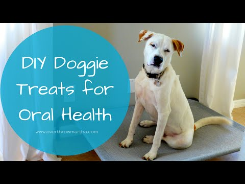 DIY Doggie Treats for Bad Breath and Health
