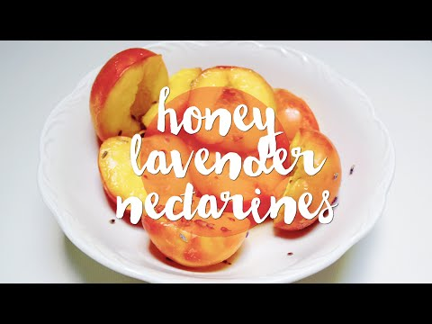 Honey-Lavender Poached Nectarines | A Saltwater Heart