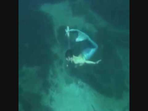 Real mermaid found incredible footage - VidoEmo ...