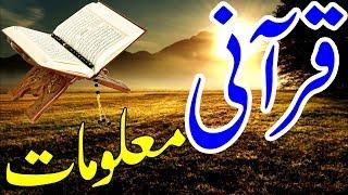 Quran Paak Ke Maloomat | Information of Holy Quran | قرآن کریم کی معلومات