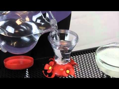 Top Fill Hummingbird Feeder - Instructional Video