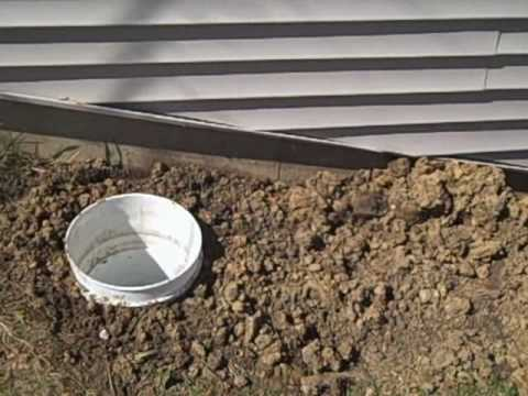 Dog Septic System