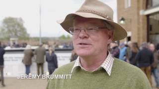 Tattersalls Guineas Breeze Up and HIT Sale 2017