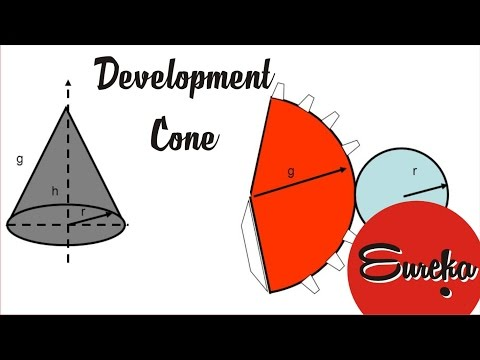 Drawing tutorial │Development of a cone